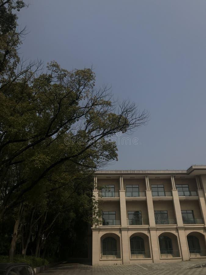 Γωνία κτήριο-πάρκων γραφείων στοκ εικόνα