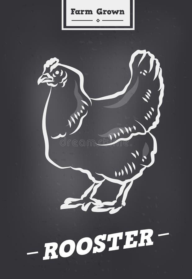 Εκλεκτής ποιότητας λογότυπο κοκκόρων στο αναδρομικό ύφος Αφίσα για το κατάστημα κρέατος κρεοπωλείων με τα πουλερικά διανυσματική απεικόνιση
