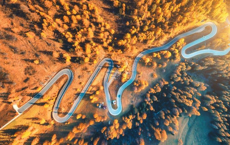Εναέρια άποψη του δρόμου με πολλ'ες στροφές στο δάσος φθινοπώρου στο ηλιοβασίλεμα στοκ εικόνες