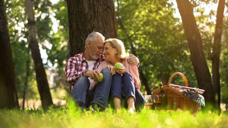 Εξαιρετικά ευτυχές παλαιό ζεύγος που στηρίζεται στη χλόη, που κρατά τα μήλα και που αγκαλιάζει, πικ-νίκ στοκ εικόνα