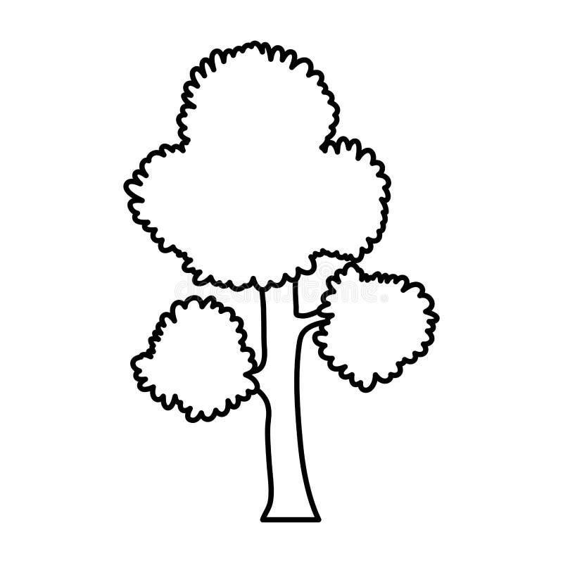 Εξωτικός μίσχος φύλλων κλάδων δέντρων γραμμών διανυσματική απεικόνιση