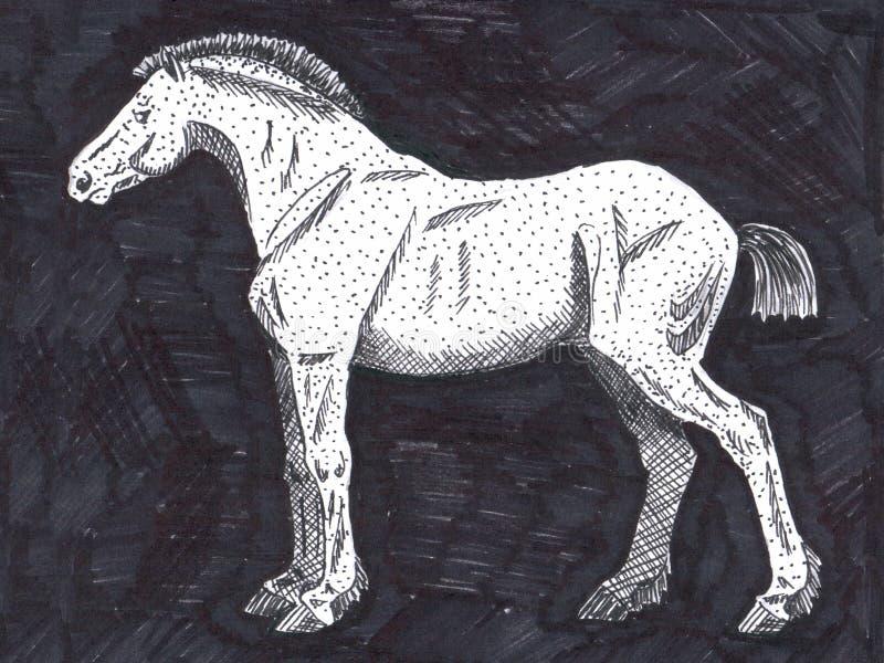 Ερασιτεχνικό σχέδιο ενός αλόγου ελεύθερη απεικόνιση δικαιώματος