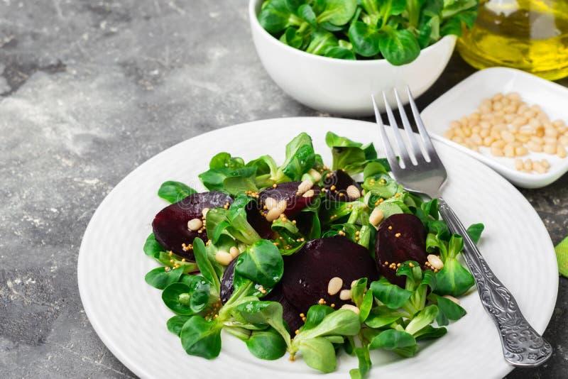 Εύκολη χορτοφάγος σαλάτα με τα φρέσκα λαχανικά και νέα πράσινα στο άσπρο πιάτο Η έννοια της υγιούς και κατάλληλης διατροφής στοκ φωτογραφίες με δικαίωμα ελεύθερης χρήσης