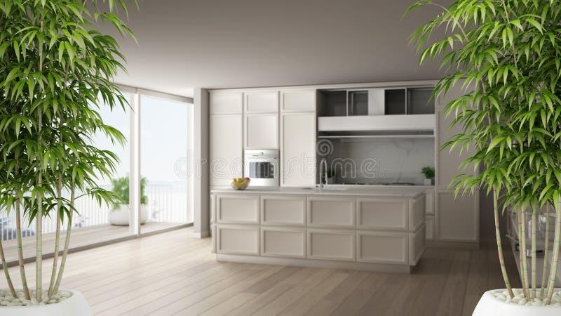 Εσωτερικό της Zen με τις σε δοχείο εγκαταστάσεις μπαμπού, φυσική εσωτερική έννοια σχεδίου, κλασική άσπρη κουζίνα στο σύγχρονο δια απεικόνιση αποθεμάτων