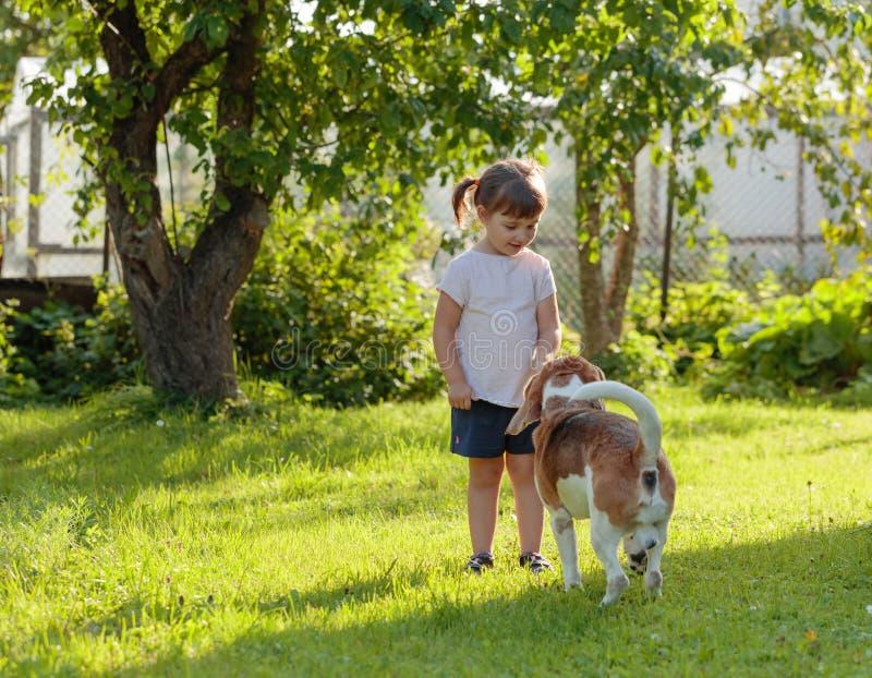 Ευτυχές μικρό κορίτσι με το σκυλί στην ηλιόλουστη θερινή ημέρα στον κήπο στοκ εικόνες