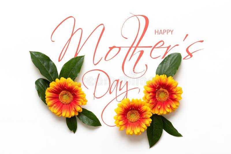 Ευτυχής ανασκόπηση ημέρας μητέρων ` s Επίπεδος βάλτε τη ευχετήρια κάρτα με τα όμορφα λουλούδια gerbera στο άσπρο υπόβαθρο στοκ εικόνες