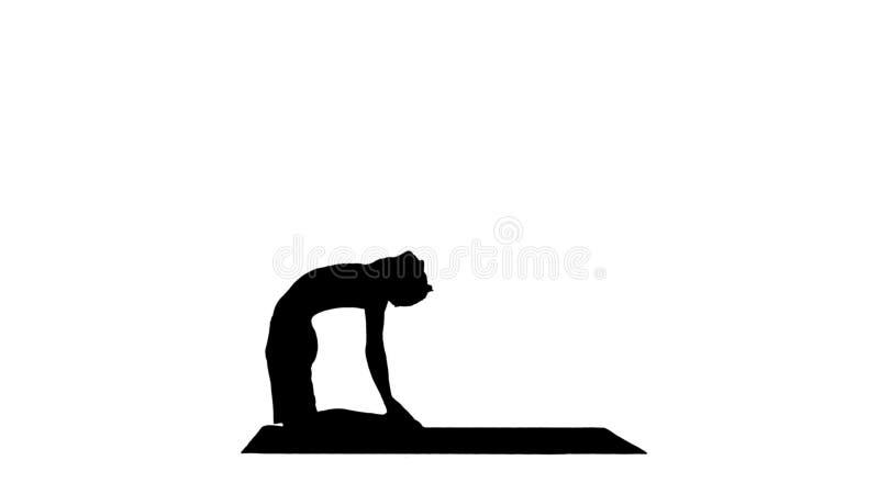 Επίλυση άνδρων σκιαγραφιών φίλαθλη νεαρή, γιόγκα, pilates ή κατάρτιση ικανότητας, που στέκονται στο ushtrasana asana, Ustrasana ή στοκ εικόνα με δικαίωμα ελεύθερης χρήσης