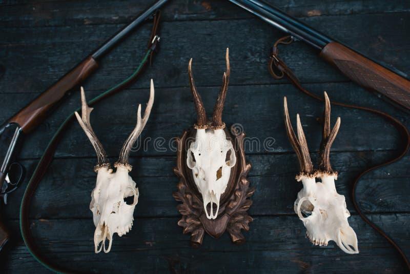 Επαγγελματικός εξοπλισμός κυνηγών για Τουφέκι, μαχαίρια, τρόπαιο sculps, πυρομαχικά, και άλλα σε ένα ξύλινο μαύρο υπόβαθρο Tro στοκ εικόνα