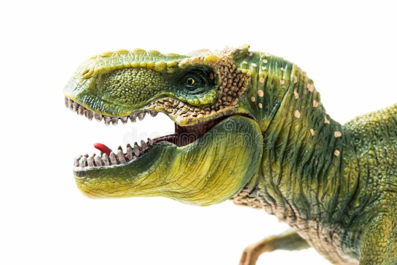 Επικεφαλής ειδώλιο Rex τυραννοσαύρων στο λευκό στοκ φωτογραφίες με δικαίωμα ελεύθερης χρήσης