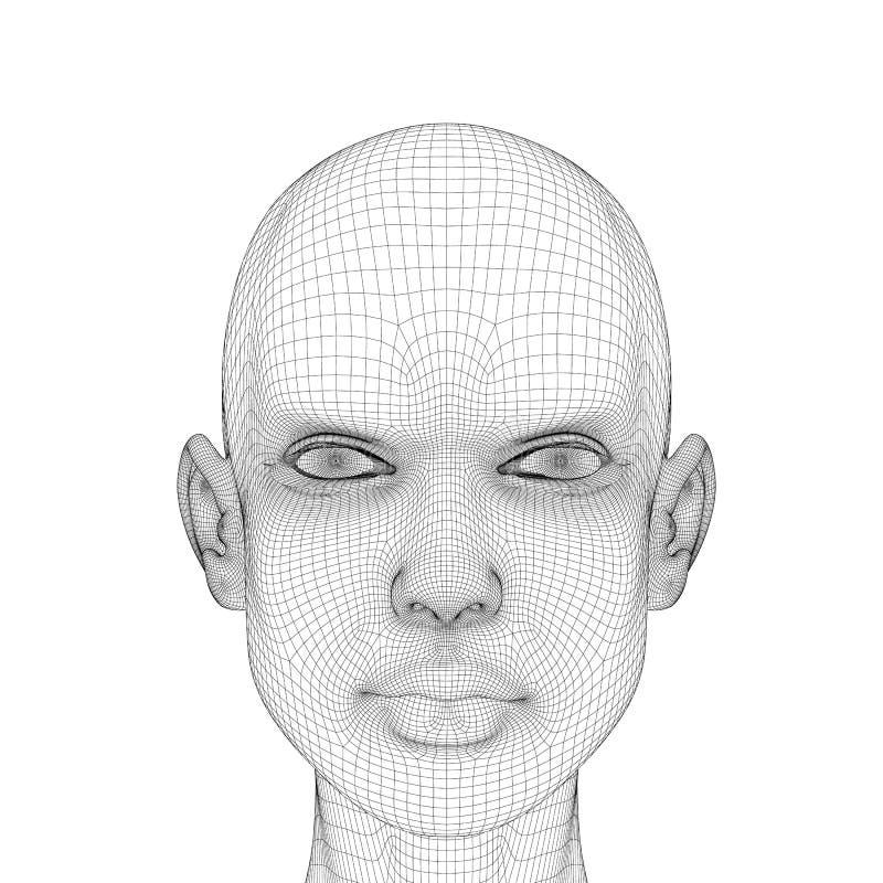 Επικεφαλής κορίτσια Wireframe με μια σοβαρή έκφραση του προσώπου Polygonal κεφάλι κοριτσιών που απομονώνεται στο άσπρο υπόβαθρο τ ελεύθερη απεικόνιση δικαιώματος