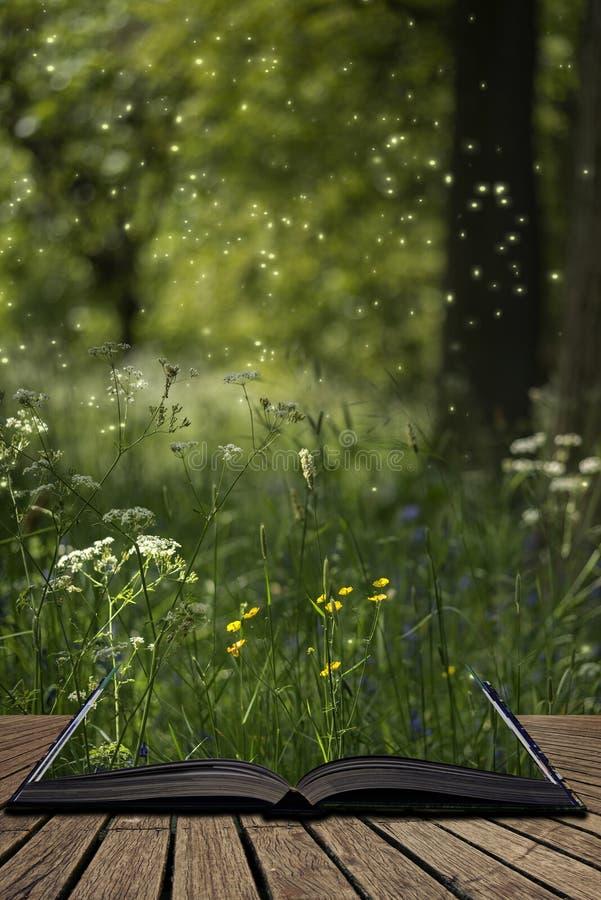 Ζαλίζοντας εικόνα τοπίων ύφους φαντασίας των fireflies στη νυχτερινή δασική σκηνή που βγαίνει από τις σελίδες του ανοικτού βιβλίο στοκ φωτογραφίες