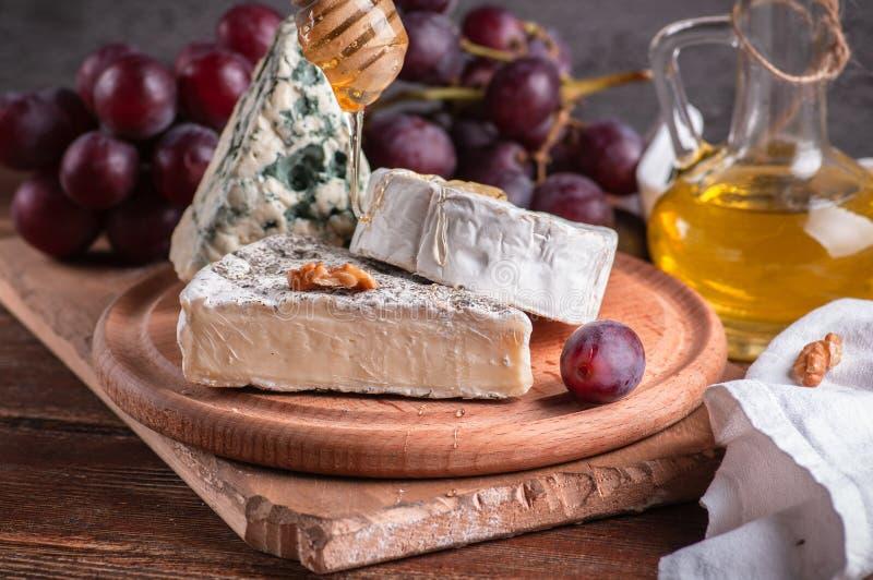 ζωή τυριών ακόμα Τυρί maasdamer, brie, camembert, vinograd, MED στοκ εικόνα