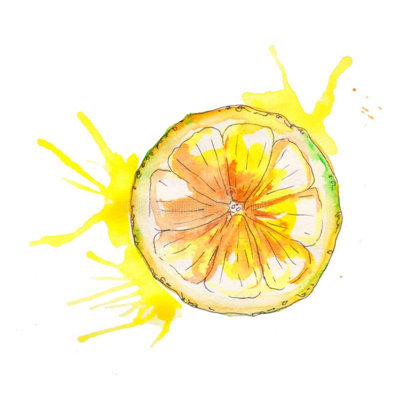 Ζωγραφισμένο στο χέρι juicy λεμόνι Watercolor που απομονώνεται στο άσπρο υπόβαθρο ελεύθερη απεικόνιση δικαιώματος