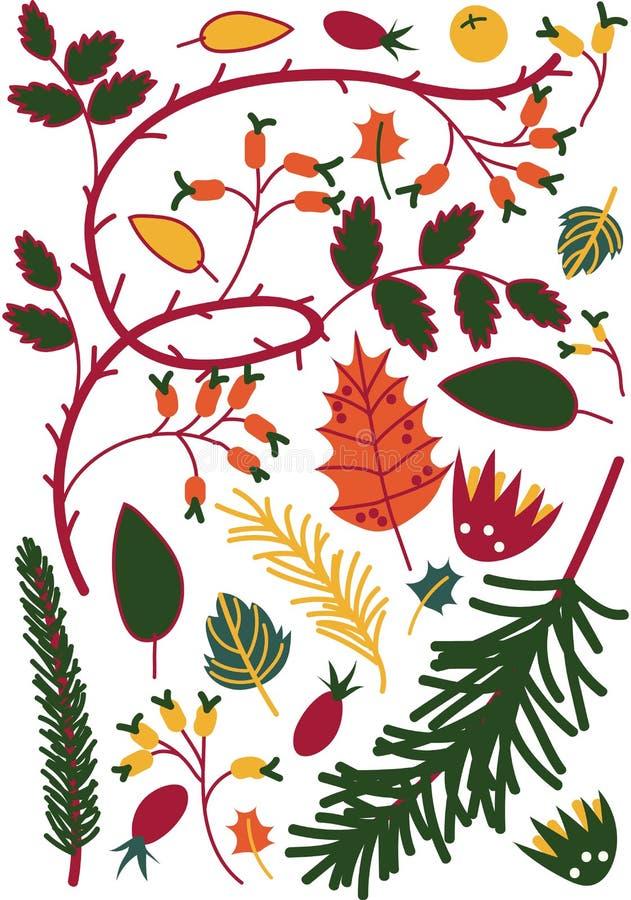 Ζωηρόχρωμα φύλλα και μούρα, κλαδάκια Briar και κωνοφόρα δέντρα, Floral άνευ ραφής σχέδιο φθινοπώρου, εποχιακό διάνυσμα ντεκόρ ελεύθερη απεικόνιση δικαιώματος