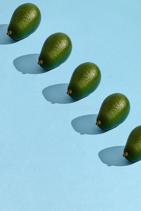 Ζωηρόχρωμο σχέδιο φρούτων φρέσκου ολόκληρου του αβοκάντο που τακτοποιείται στο μπλε υπόβαθρο κρητιδογραφιών στοκ εικόνα με δικαίωμα ελεύθερης χρήσης