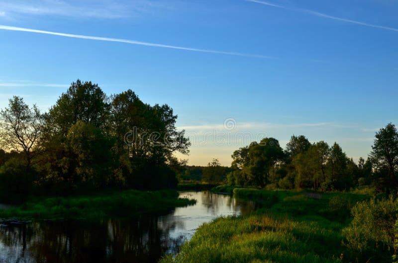 Ηλιοβασίλεμα σε έναν μπλε ουρανό που αγνοεί έναν μικρό ποταμό μέσα σε ένα δάσος αγριοτήτων στοκ εικόνες