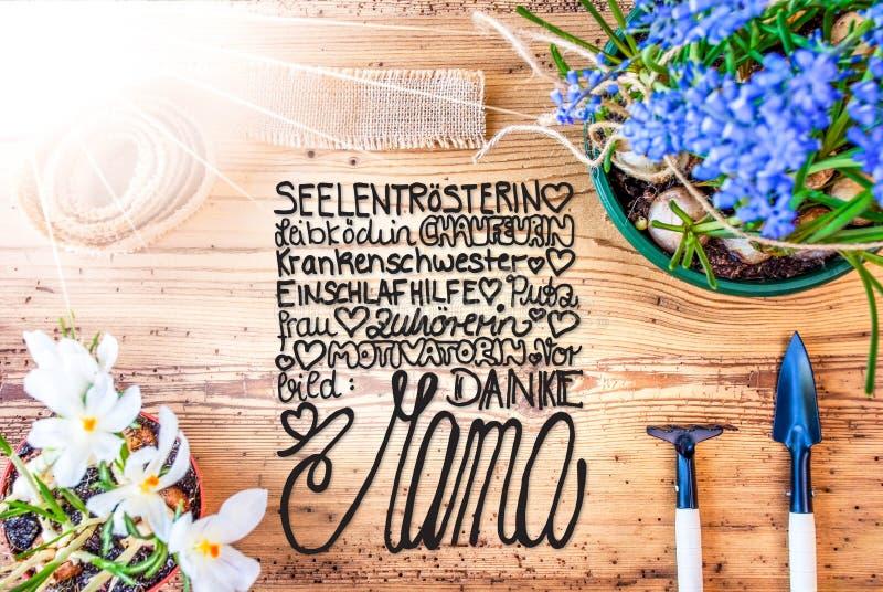 Ηλιόλουστα λουλούδια ανοίξεων, ευχαριστίες Mom μέσων μαμών Danke καλλιγραφίας στοκ φωτογραφία με δικαίωμα ελεύθερης χρήσης