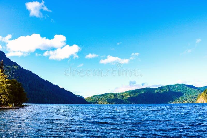 Ημισέληνος λιμνών στο ολυμπιακό εθνικό πάρκο, Ουάσιγκτον, ΗΠΑ στοκ εικόνα