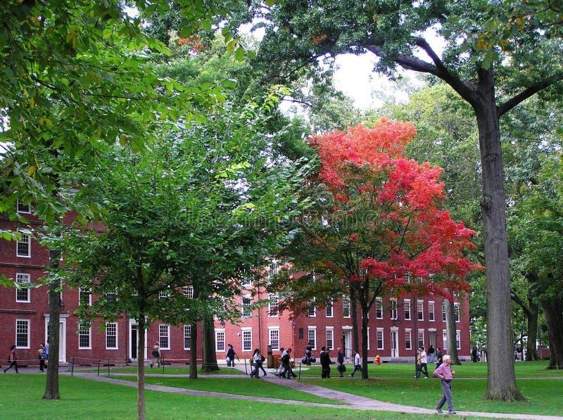 ΗΠΑ, Καίμπριτζ, Μασαχουσέτη - 29 Σεπτεμβρίου 2008 Η όμορφη πανεπιστημιούπολη του παλαιότερου Πανεπιστημίου του Χάρβαρντ το πρώιμο στοκ εικόνες