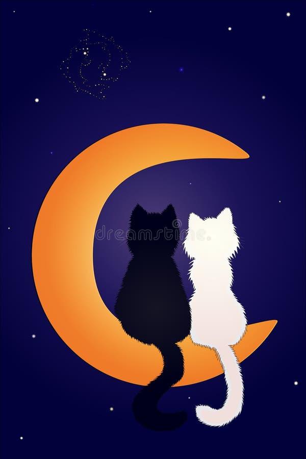 Η αγάπη είναι στις γάτες στο φεγγάρι ελεύθερη απεικόνιση δικαιώματος
