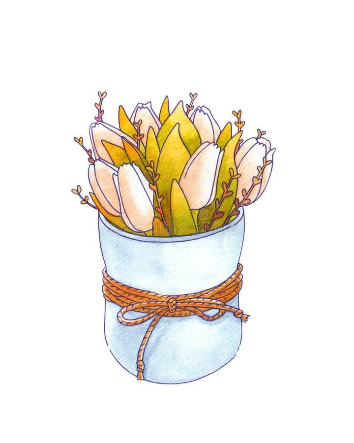 Η ανθοδέσμη Watercolor της άνοιξη ανθίζει τις τουλίπες σε ένα πότισμα μπορεί απεικόνιση αποθεμάτων