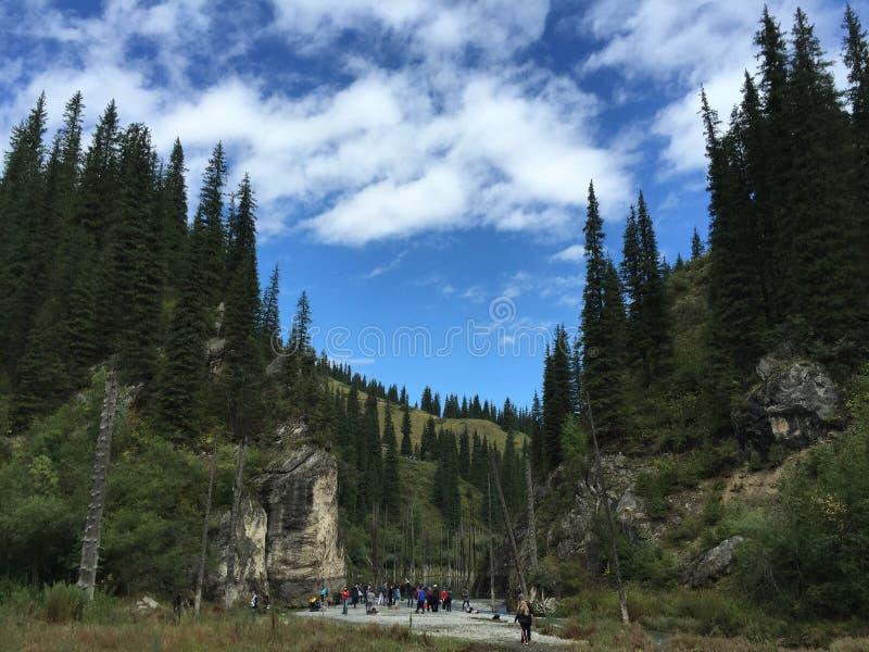 Η αρχή της λίμνης Kaindy στο Καζακστάν στοκ φωτογραφία