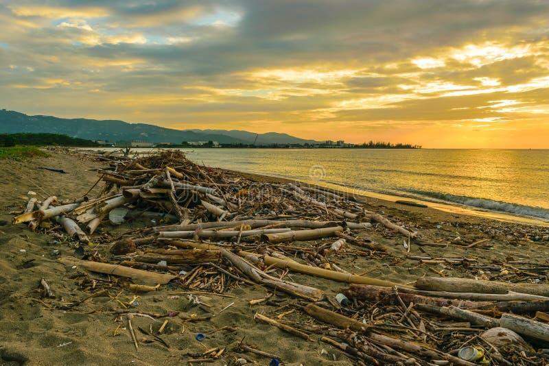 Η βρωμιά και τα απορρίματα έπλυναν επάνω στην παραλία στοκ εικόνες