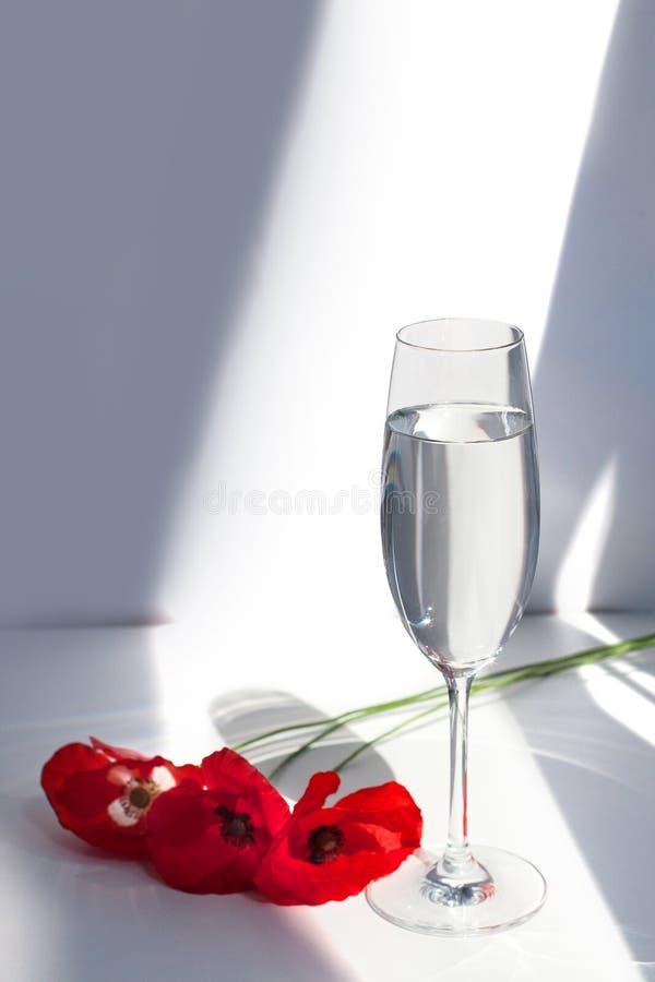 Η κόκκινη παπαρούνα τρία ανθίζει στον άσπρο πίνακα με το φως και τις σκιές ήλιων αντίθεσης και το γυαλί κρασιού με την κινηματογρ στοκ φωτογραφία