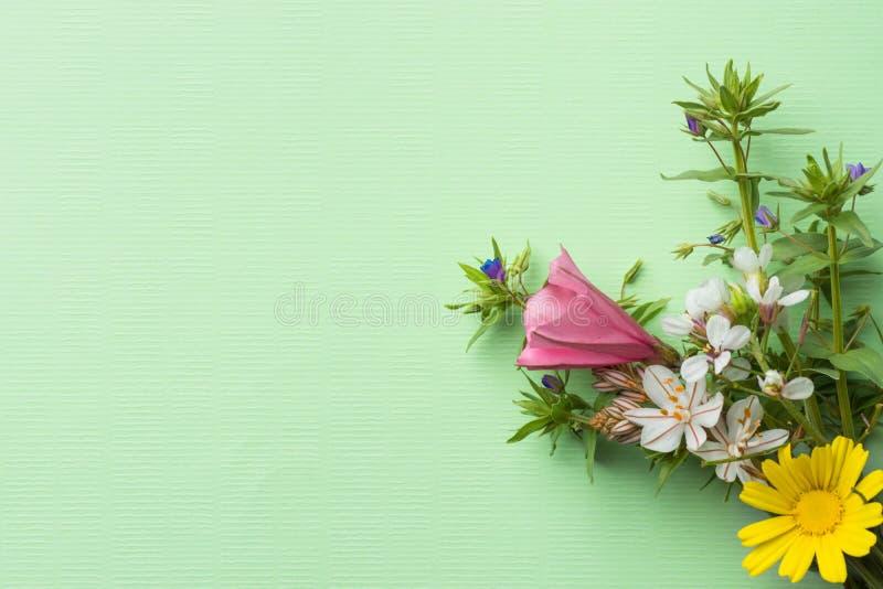 Η μικρή κομψή ανθοδέσμη του κήπου και του τομέα ανθίζει τους πράσινους κλαδίσκους στο ελαφρύ τυρκουάζ υπόβαθρο chartreuse Πάσχα στοκ φωτογραφία με δικαίωμα ελεύθερης χρήσης