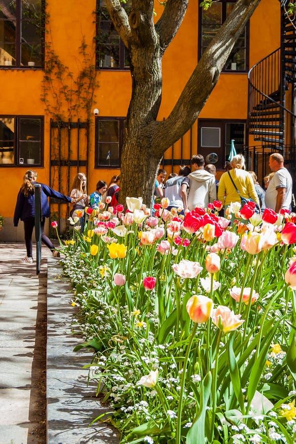 Η δέσμη ανάπτυξης λουλουδιών τουλιπών άνθισης της δονούμενης επάνω στο κατώφλι με την ομάδα τουριστών και πορτοκαλιάς πρόσοψης οι στοκ φωτογραφίες