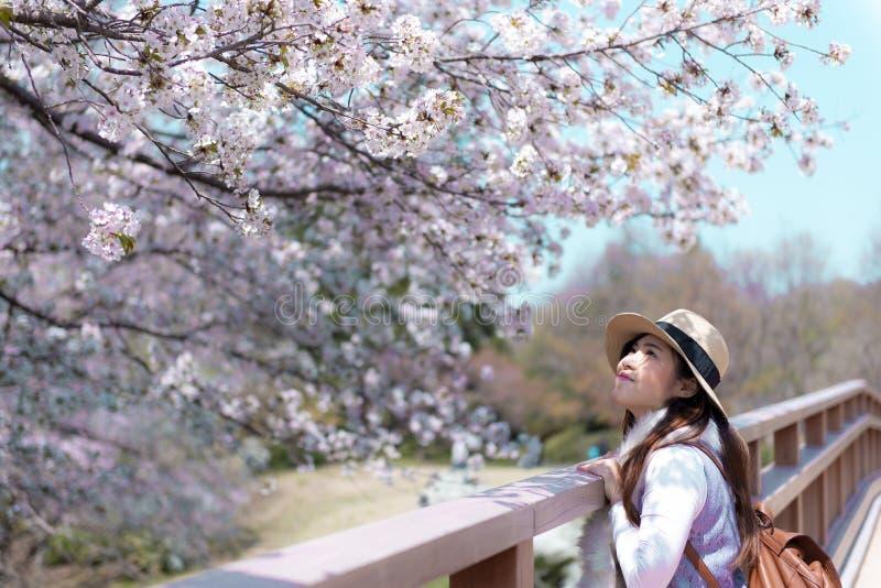 Η όμορφη νέα ασιατική γυναίκα είναι απολαμβάνει κατά τη διάρκεια της άνοιξη στην Ιαπωνία στοκ εικόνα με δικαίωμα ελεύθερης χρήσης