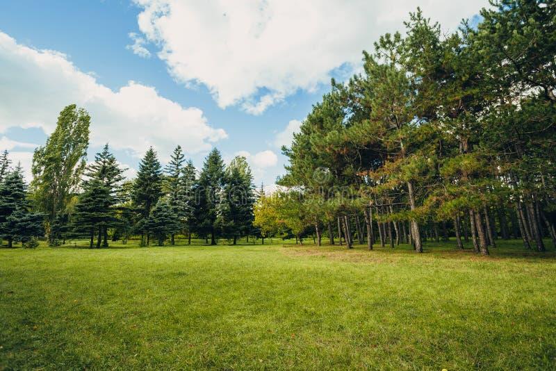 Η όμορφη σκηνή πάρκων σταθμεύει δημόσια με τον πράσινο τομέα χλόης, τις πράσινες εγκαταστάσεις δέντρων και ένα κόμμα νεφελώδης μπ στοκ φωτογραφία