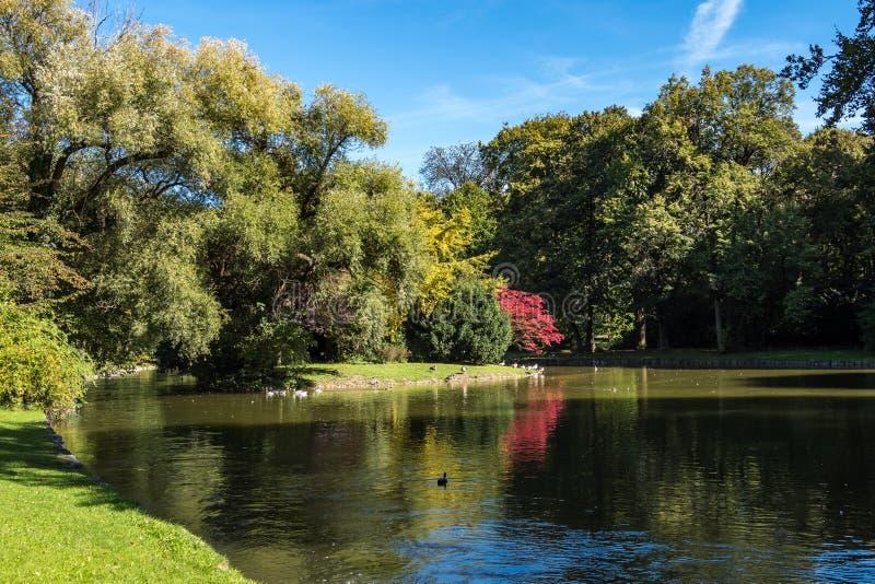 Η φραγμός-διευθυνμένη χήνα, indicus Anser που βλέπει στον αγγλικό κήπο στο Μόναχο στοκ εικόνες με δικαίωμα ελεύθερης χρήσης