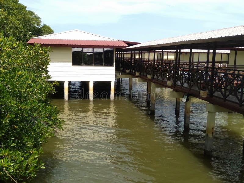 Θέρετρα μαγγροβίων στο Μπρουνέι Darussalam στοκ εικόνα με δικαίωμα ελεύθερης χρήσης