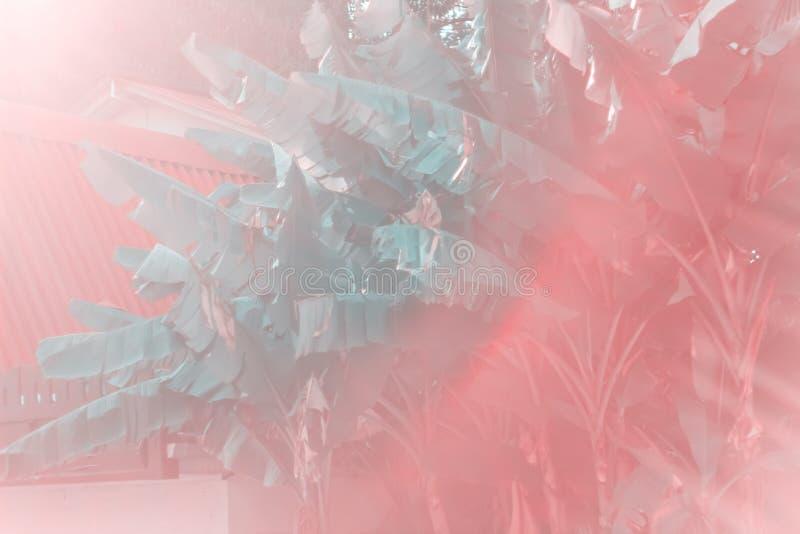 θερινό αφηρημένο δονούμενο σκηνικό στοκ φωτογραφία με δικαίωμα ελεύθερης χρήσης