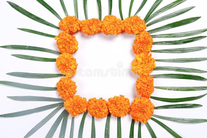 Ινδικό φεστιβάλ Diwali, λαμπτήρας Diwali και rangoli λουλουδιών στοκ φωτογραφίες με δικαίωμα ελεύθερης χρήσης