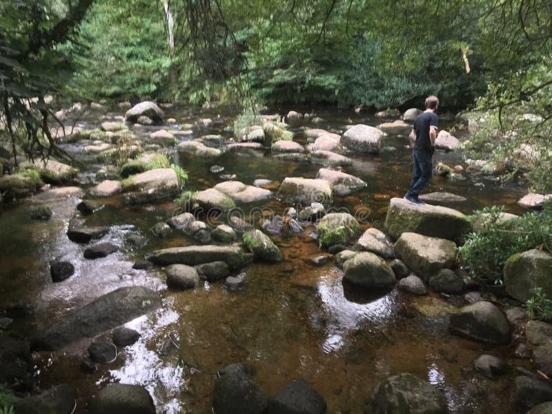 Κάπου στη μέση Dartmoor στοκ εικόνα με δικαίωμα ελεύθερης χρήσης