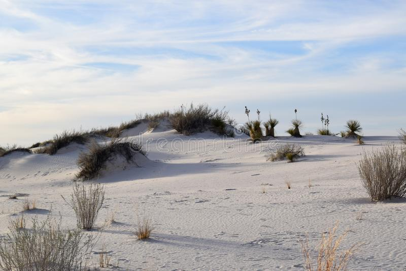 Καταπληκτική άσπρη έρημος άμμων στο Νέο Μεξικό, ΗΠΑ στοκ εικόνα με δικαίωμα ελεύθερης χρήσης