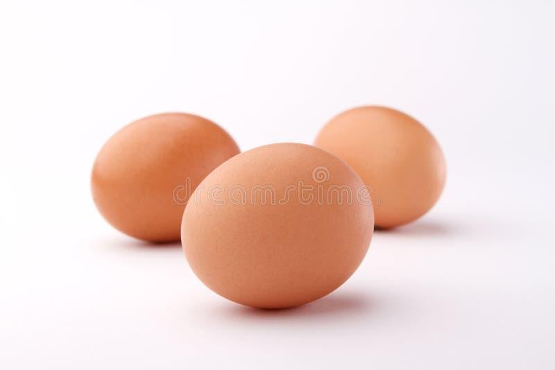 καφετιά αυγά τρία στοκ εικόνες