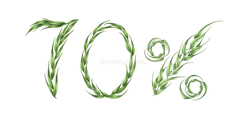 70% κείμενο, εβδομήντα τοις εκατό από τα πράσινα φύλλα η διακοσμητική εικόνα απεικόνισης πετάγματος ραμφών το κομμάτι εγγράφου τη διανυσματική απεικόνιση