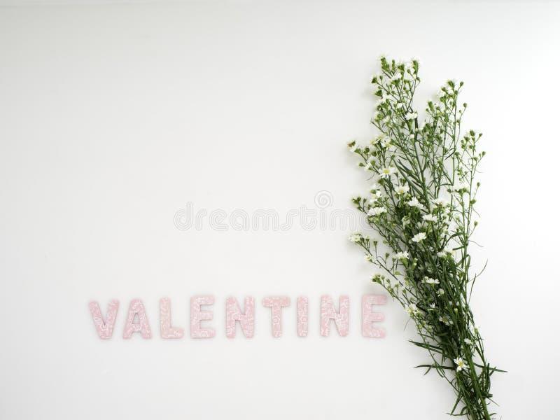 Κιβώτιο δώρων με την ημέρα βαλεντίνων λουλουδιών στοκ εικόνες με δικαίωμα ελεύθερης χρήσης