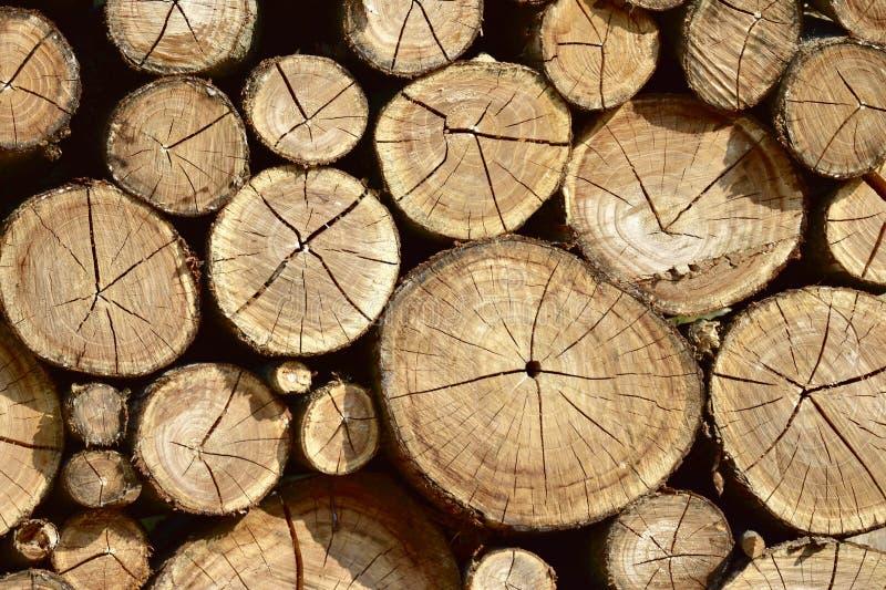 Κινηματογράφηση σε πρώτο πλάνο των ξηρών ξύλινων κούτσουρων ως αφηρημένο φυσικό υπόβαθρο στοκ εικόνες