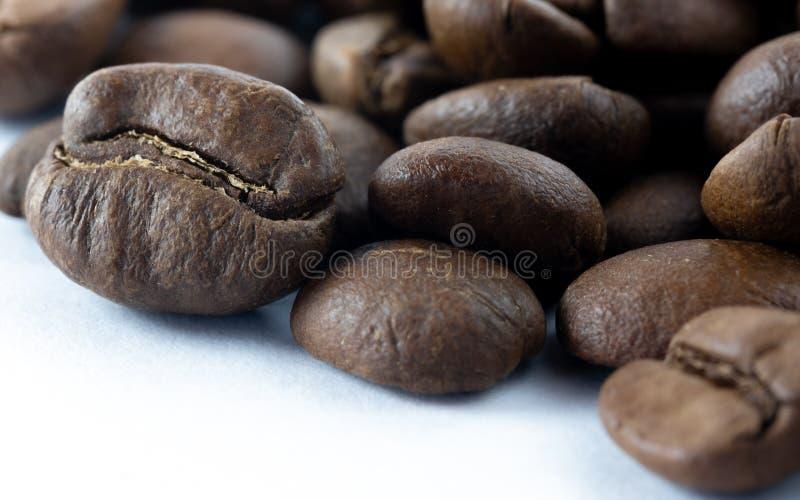 Κινηματογράφηση σε πρώτο πλάνο των φασολιών καφέ στοκ εικόνα