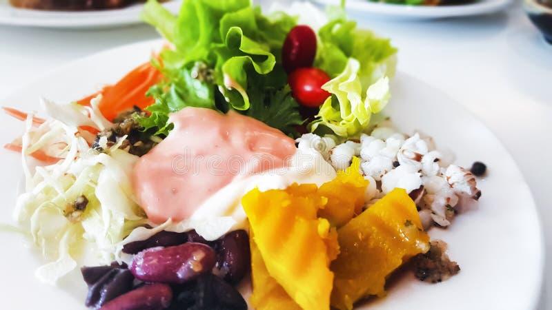 Κλείστε επάνω την υγιή οργανική φυτική σαλάτα στην κρέμα σαλάτας πιάτων και γιαουρτιού χαμηλής περιεκτικότητας σε λιπαρά, στο άσπ στοκ φωτογραφίες