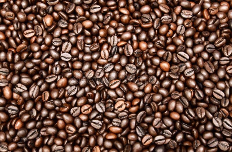 Κλείστε επάνω τη φωτογραφία των ψημένων φασολιών καφέ Ψημένα σύσταση και υπόβαθρο φασολιών καφέ στοκ εικόνα