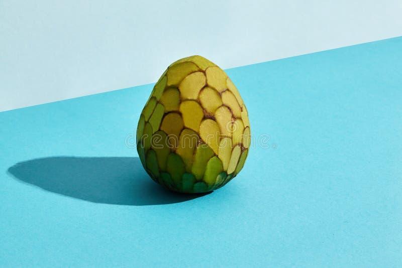 Κλείστε επάνω υψηλό - ποιοτική εικόνα ολόκληρης της ζάχαρη-Apple, φρούτα cherimoya squamosa Annona, σύνθεση φρούτων στην μπλε κρη στοκ φωτογραφία με δικαίωμα ελεύθερης χρήσης