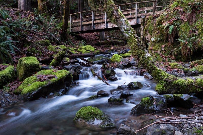 Κολπίσκος και γέφυρα πτώσης στοκ φωτογραφία με δικαίωμα ελεύθερης χρήσης