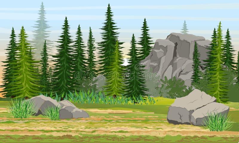 Κομψά δάσος, πέτρες και βουνά, χλόη Η φύση της Ευρώπης και της Αμερικής ελεύθερη απεικόνιση δικαιώματος