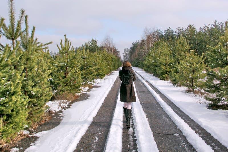Κορίτσι στο δρόμο το χειμώνα στοκ εικόνα με δικαίωμα ελεύθερης χρήσης