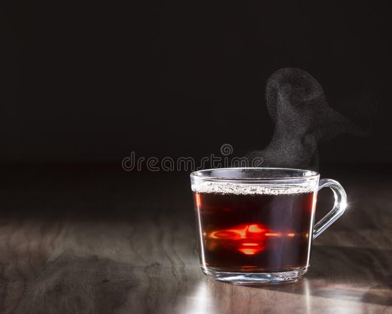 Κούπα γυαλιού του βρασίματος στον ατμό του καυτού τσαγιού στοκ φωτογραφίες με δικαίωμα ελεύθερης χρήσης